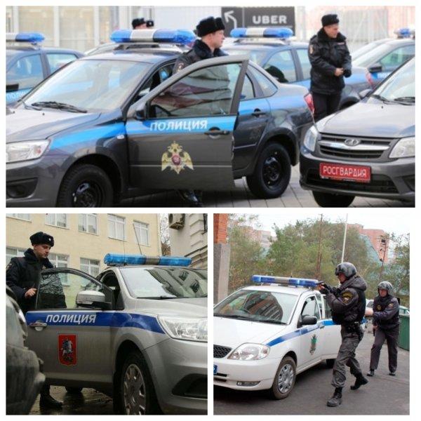 Утвержден новый цвет служебных автомобилей полиции и Росгвардии