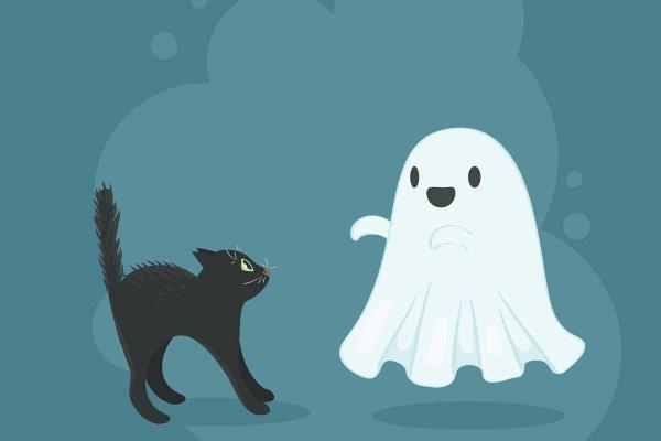 Учёный рассказал, зачем важно верить в призраков