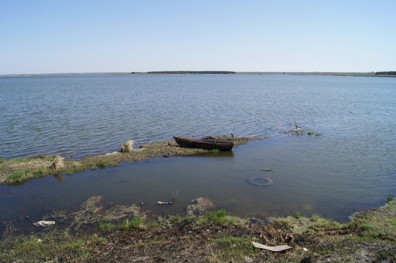 В Тюмени около лодки обнаружили труп
