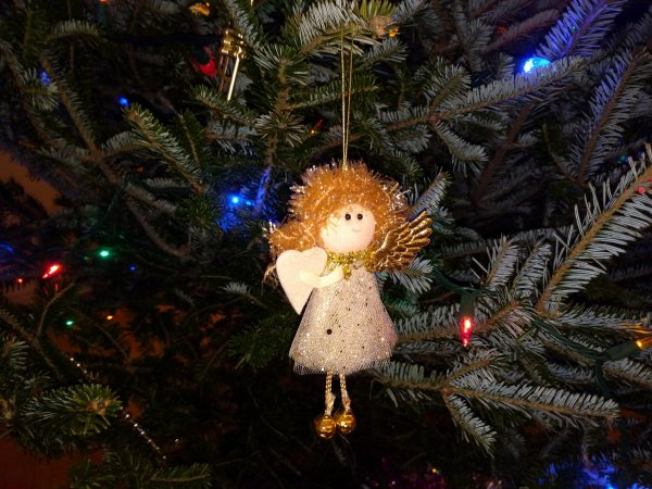 Новый год уже близко: В Ростове начали возводить главную елку