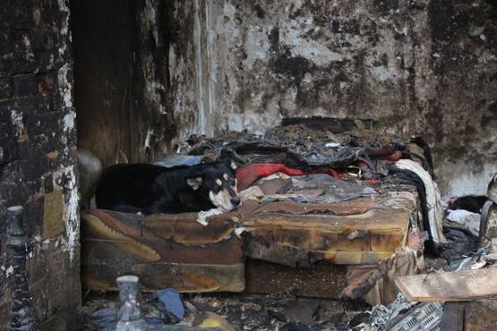Страшно ложиться спать. Тюменцы, в районе которых горят дома, получают угрозы