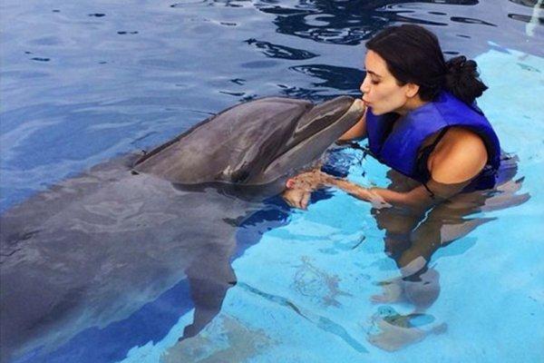 Учёные: Общение с людьми негативно влияет на секс дельфинов
