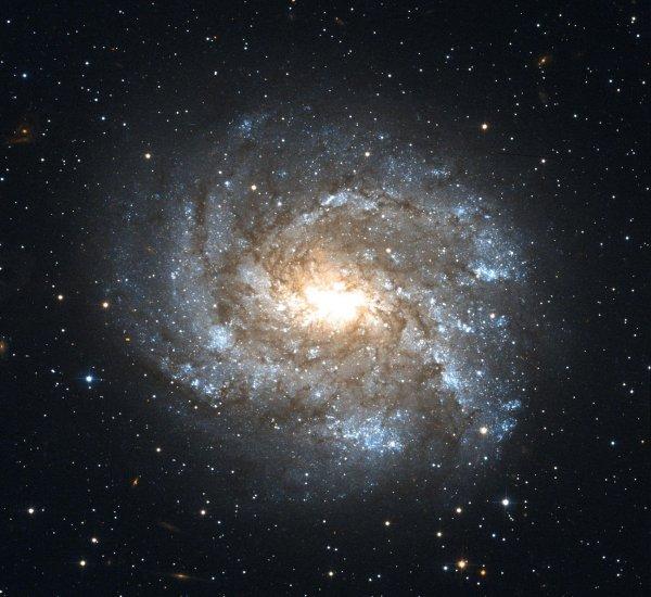 Космический «труп» помог найти недостающую звездную пыль