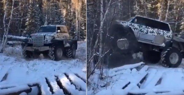 «Лес по колено»: Валящий деревья «Крузак» на 40-х колёсах попал на видео