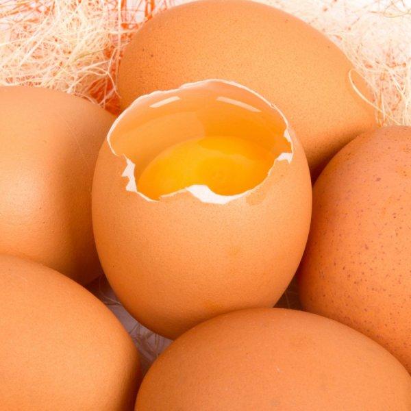 Фотография куриного яйца бьет рекорды в Instagram