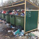 В Ростове образовался мусорный коллапс