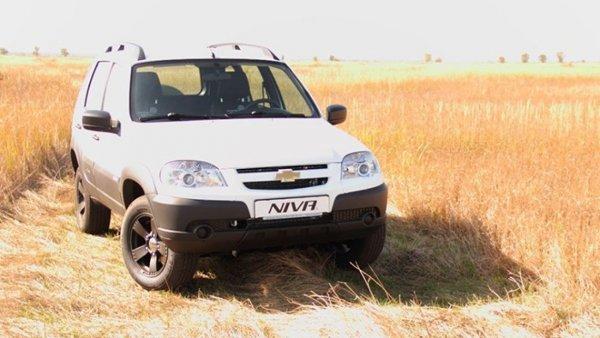 Что же не так со «Шнивой»: О слабых сторонах Chevrolet Niva рассказал блогер