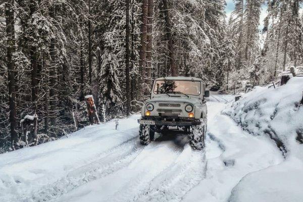 УАЗ «Хантер» против УАЗ Off-Road: Блогер сравнил проходимость внедорожников в заснеженном лесу