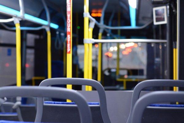 Жительницу Ростова пристыдили за поведение в автобусе