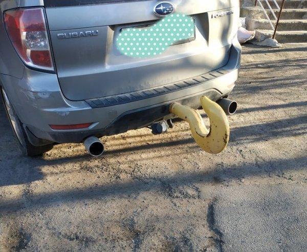 «Лесник-самец»: Subaru Forester с «серьёзным» фаркопом насмешил сеть