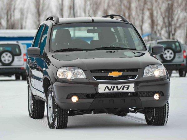 Модельный ряд Chevrolet Niva будет расширен. Ждать «Шниву» Vision?