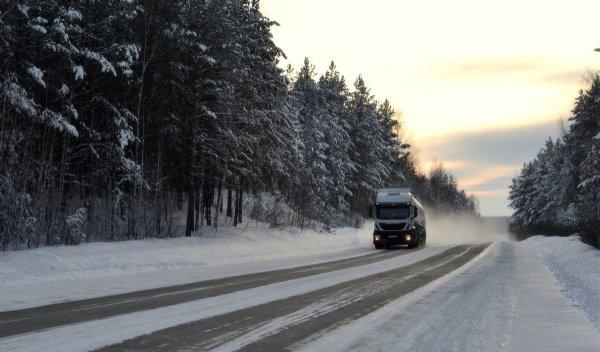 «Возьми с собой ёлку на всякий случай»: В сети рассказали о поездках по М4 «Дон» в преддверие Нового Года