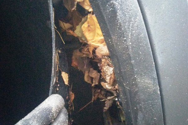 «Мишка утеплялся»: В сети показали, что можно обнаружить под локерами Skoda Kodiaq