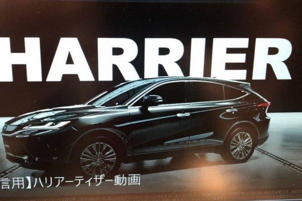 Задвинет брата: Новый Toyota Harrier может «откусить» продажи у RAV4