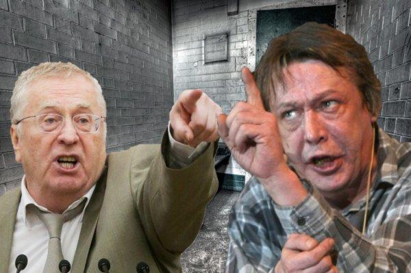 Жириновский требует максимального наказания для Ефремова